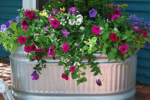 Spring planter 08