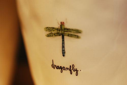 Dragonfly-pot!