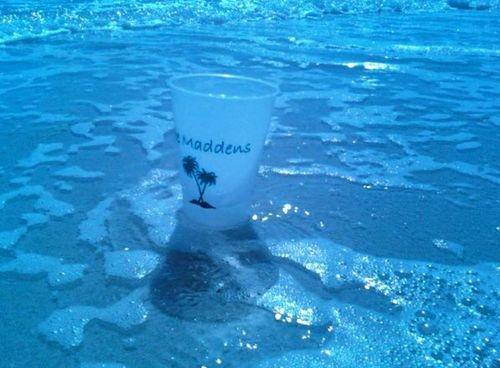 Ann cup