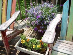 Deck_plants