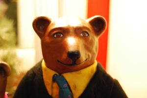 Bearcloseup