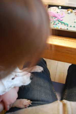 Fiona_and_pearl_on_my_lap