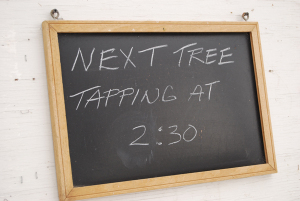 Tree_tapping_sign